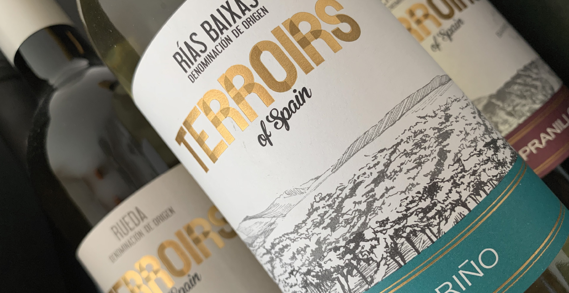 fine_wine_collection-terroirs-cabecera