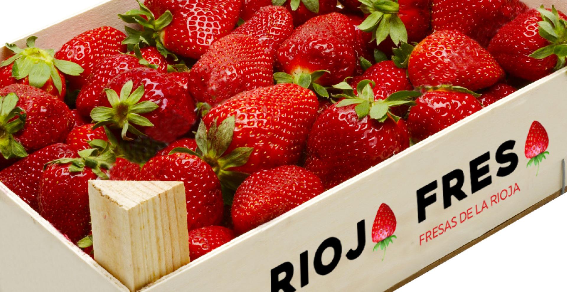 fresas_de_la_rioja-rioja_fresa-cabecera